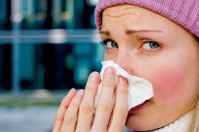 viemmui - Cây thuốc tự nhiên chữa viêm mũi dị ứng hiệu quả - duoclieuvasuckhoe.com